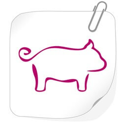 знак Свиньи